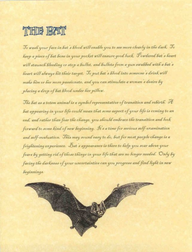 Book of Shadows page about The Bat Wicca Wiccan Witchcraft