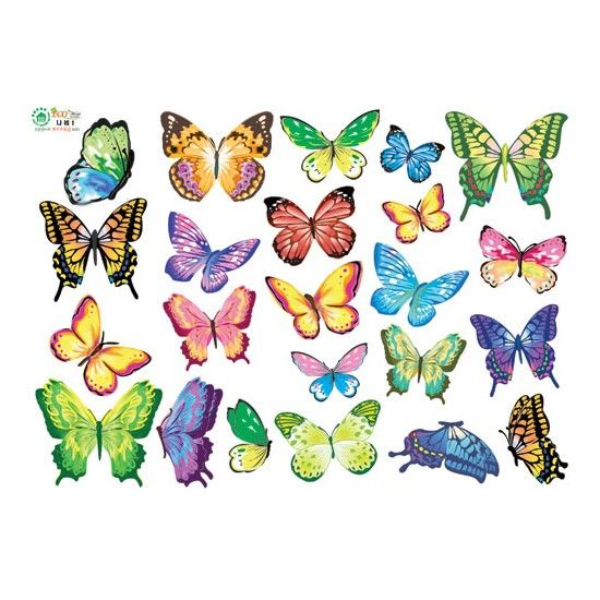 VIVID Color Butterfly Adhesive Removable Wall Home Decor Accents